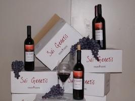 photo vin
